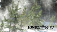 В Туве отступили морозы: днем 11 января днём местами температура «поднимется» до – 8°С, в горах метель до 17-22 м/с