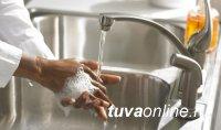 В Туве ряд МСП допустили к деятельности с соблюдением санитарных правил