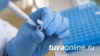 В Туве к 24 января выявили рекордно низкое число инфицированных COVID-19