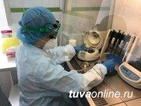 В Туве к 28 января госпитализировали 12 больных с COVID-19