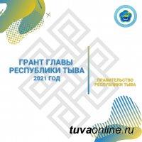 В Туве стартовал прием заявок на гранты Главы Республики Тыва