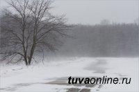 В Туве 4 февраля местами ветер с порывами до 15-20 м/с, метель