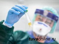 Тува по итогам недели на 3-м месте среди регионов СФО по низкой смертности от COVID-19