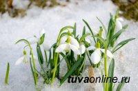 В Туве 6 марта ночью местами до 29°С мороза, днём до 7°С тепла
