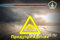 В Туве в течение суток 26 марта ожидают сильный ветер с порывами до 28 м/с, снег, метель