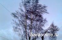 В Туве 29 марта местами западный ветер усилится до 17 м/с