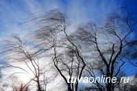 В Туве 9 апреля ожидается сильный ветер