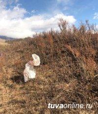 В Туве у местного пастуха изъяли килограмм марихуаны