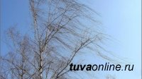 В Туве 17 апреля местами ожидают усиление западного ветра до 22 м/с, пыльную бурю и дождь