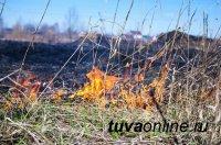 В Туве с 18 по 20 апреля местами ожидают IV класс пожароопасности