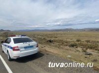 В Туве на трассе Р-257 в ДТП разбился 36-летний водитель