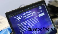 В Туве стартовало предварительное голосование по выдвижению кандидатов в депутаты Госдумы
