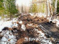 Минприроды Тувы оштрафовало красноярскую золотодобывающую артель за прокладку дороги через территорию заказника
