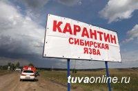 Жителя Тувы проверяют на сибирскую язву