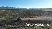 В Чеди-Хольском  районе Тувы идет  посев  овса и ячменя