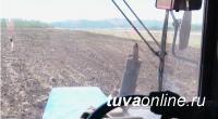 В пяти кожуунах Тувы завершен сев зерновых