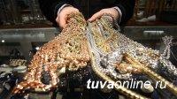 В  Кызыле мужчина похитил из торговой точки лоток с золотом