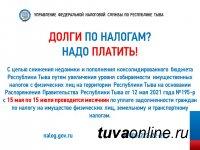 В Туве продлили месячник по уплате налоговой задолженности по имущественным налогам физических лиц