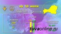 За 9 июля в Туве выявлено 135 новых случаев инфицирования Covid-19