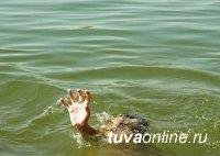 Соцблок Правительства Тувы работает по двум фактам гибели детей