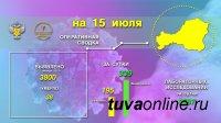 В Туве за прошедшие сутки выявлено 195 заболевших covid-19