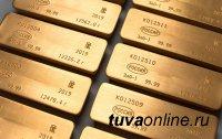 В Туве за год добыча золота снизилась на 25 процентов