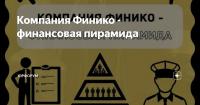 В Туве расследуются уголовные дела в отношении представителя финансовой пирамиды «Finiko»
