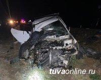 В Улуг-Хемском районе Тувы иномарка врезалась в трактор - двое погибли на месте