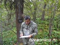 """Центр защиты леса оценил мероприятия компании """"Лунсин"""" по сохранению и восстановлению лесных богатств"""