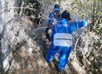 Вышел покосить сено и пропал: в Эрзинском районе Тувы девятый день ищут пропавшего в лесу человека