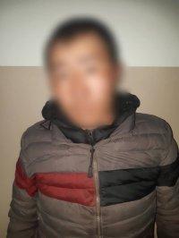 Полицейские Тувы раскрыли две кражи скота