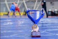 Всеармейские соревнования по Кызыл 20-22 октября будет принимать Всероссийские соревнования по спортивной борьбе на Кубок министра обороны России